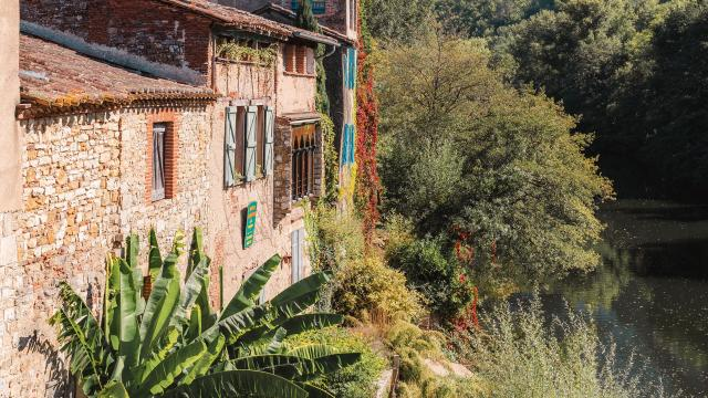 Berges de l'Aveyron à St-Antonin-Noble-Val