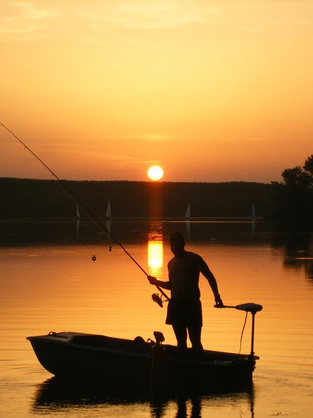 La pêche en Tarn-et-Garonne