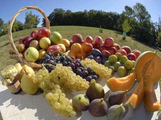 Fruits du Tarn-et-Garonne