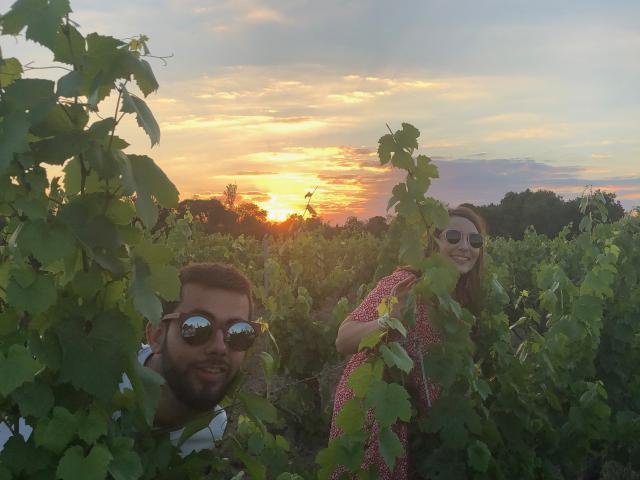 Jeu dans les vignes