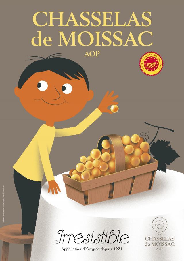 Chasselas De Moissac Aop