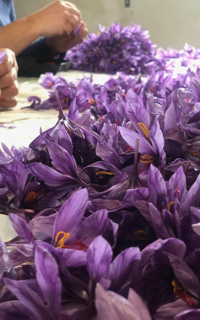 Fleurs De Safran Clos Ferrié