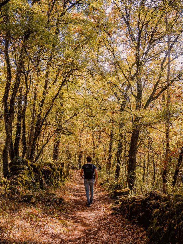 Tops 5 de la destination Tarn-et-Garonne
